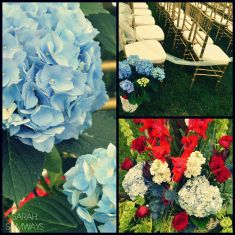 7/4/2015 Ferreira Wedding