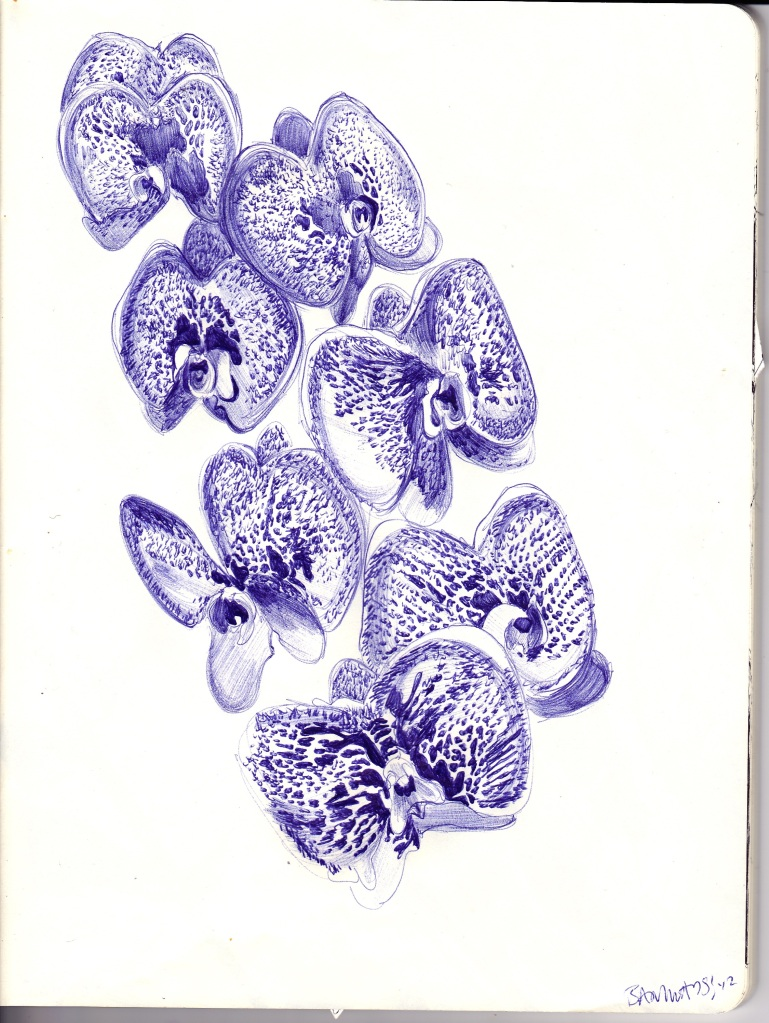 Floral Sketchbook - Orchids, pg. 1