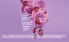 Radiant Orchid, as defined by Pantone