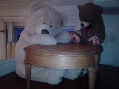 Meet my new roommates! :-)