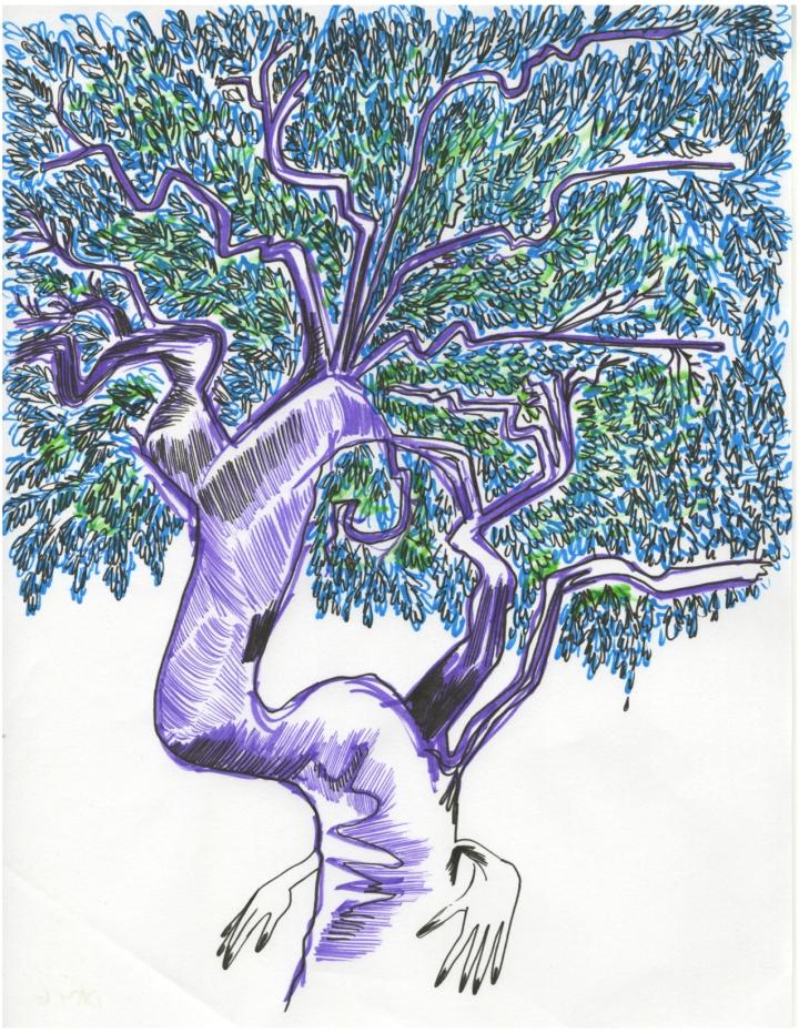 day 6_tenacious tree