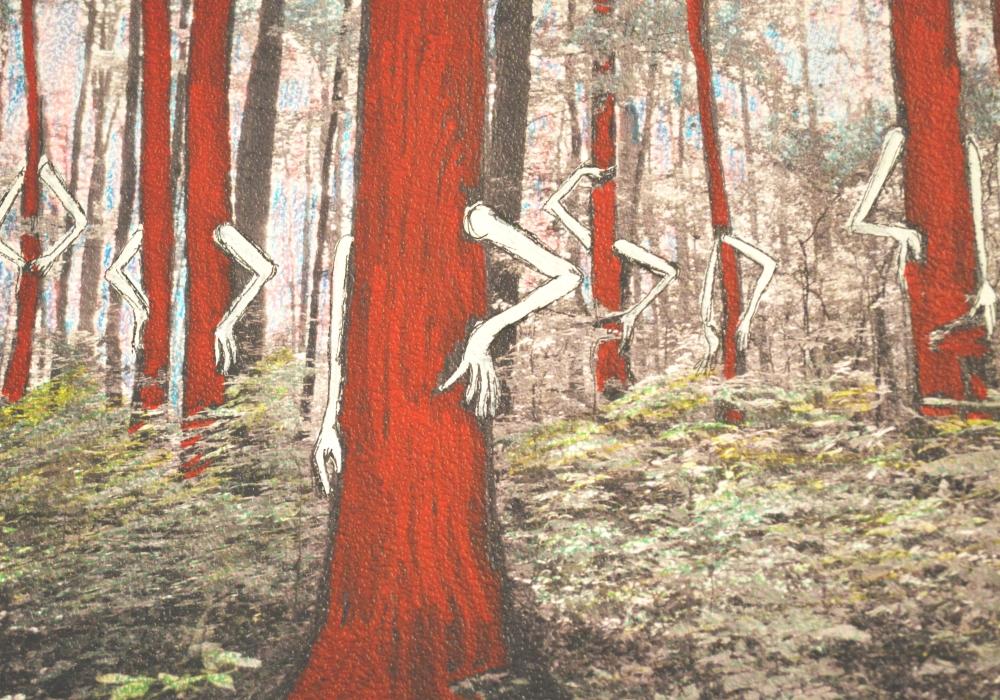trees_beauty queens