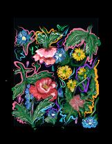 """""""Electric Floral Fantasy"""" digital illustration (2018)"""